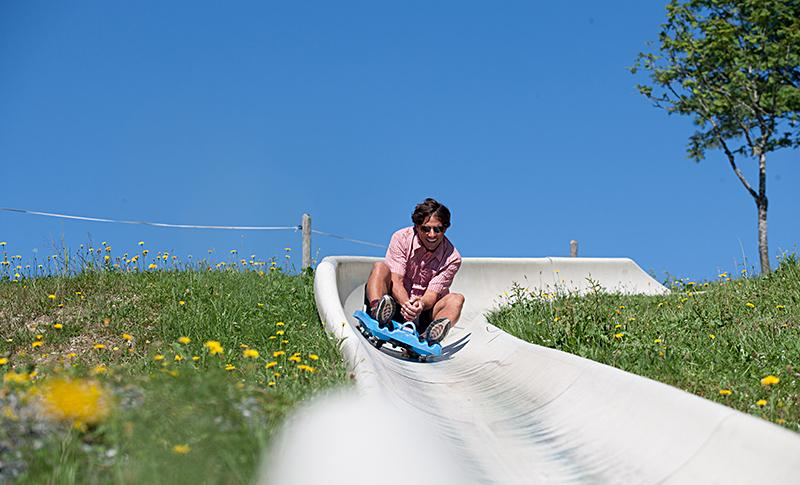 Saalfelden summer tobogganing trail