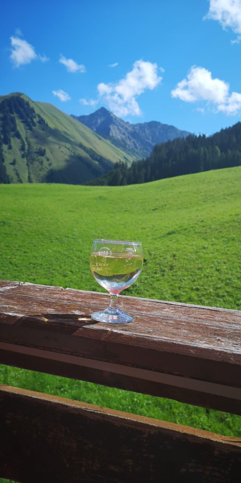Ferienwohnungen Haus Almrausch #Sommer#Bildergalerie