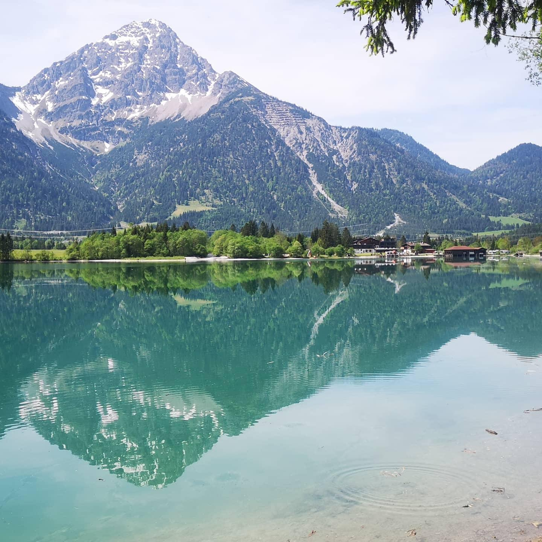 Ferienwohnungen Haus Almrausch #Willkommen#Sommer#Bildergalerie