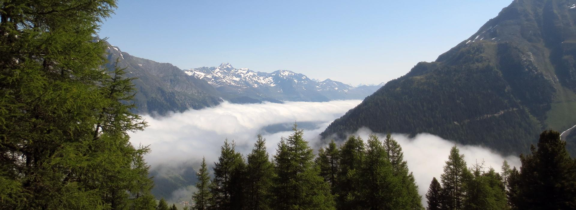 Bergkristall Ischgl ##Frühling