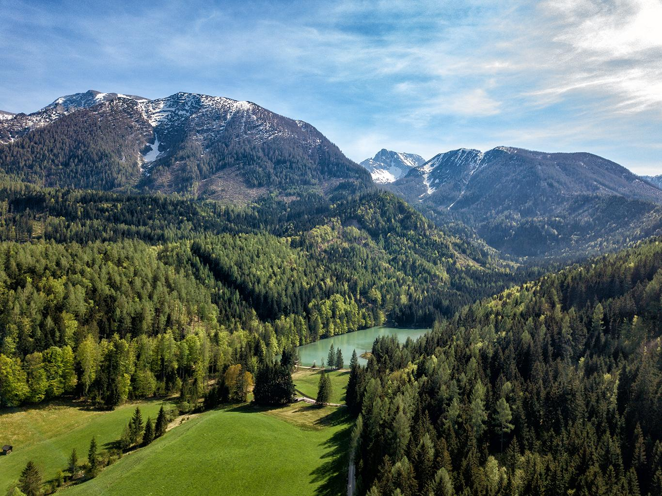 Familienbauernhof Grossgrub #Willkommen#Bildergalerie#Sommer#Schafferteich#Wanderwege