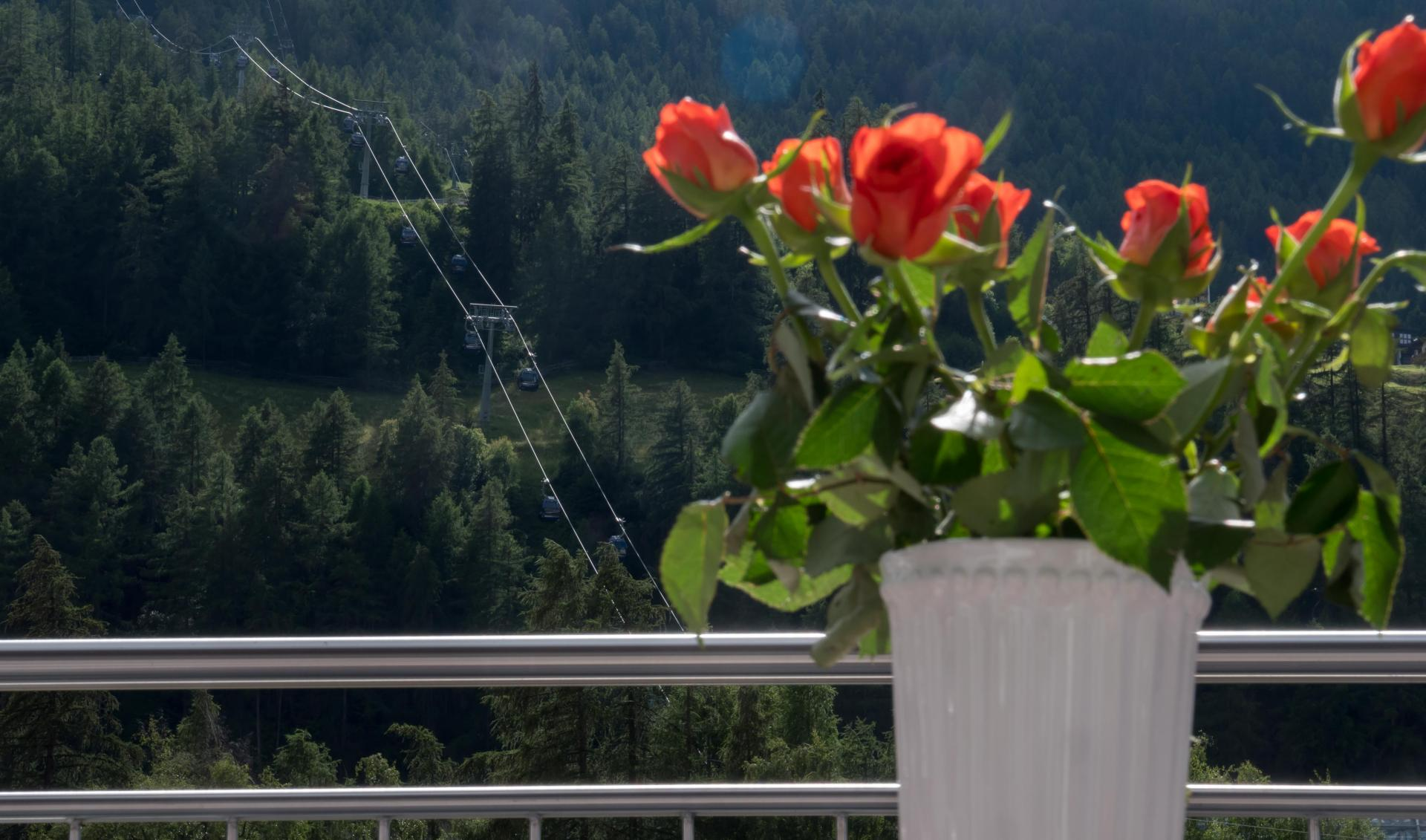 Alpenapart Saphir #Bildergalerie