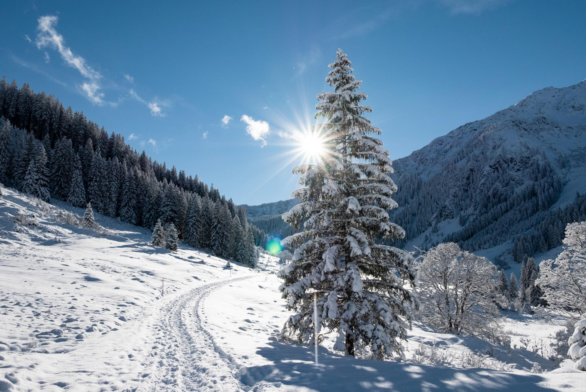 Haus am Wildbach #Willkommen#Bildergalerie#Winter
