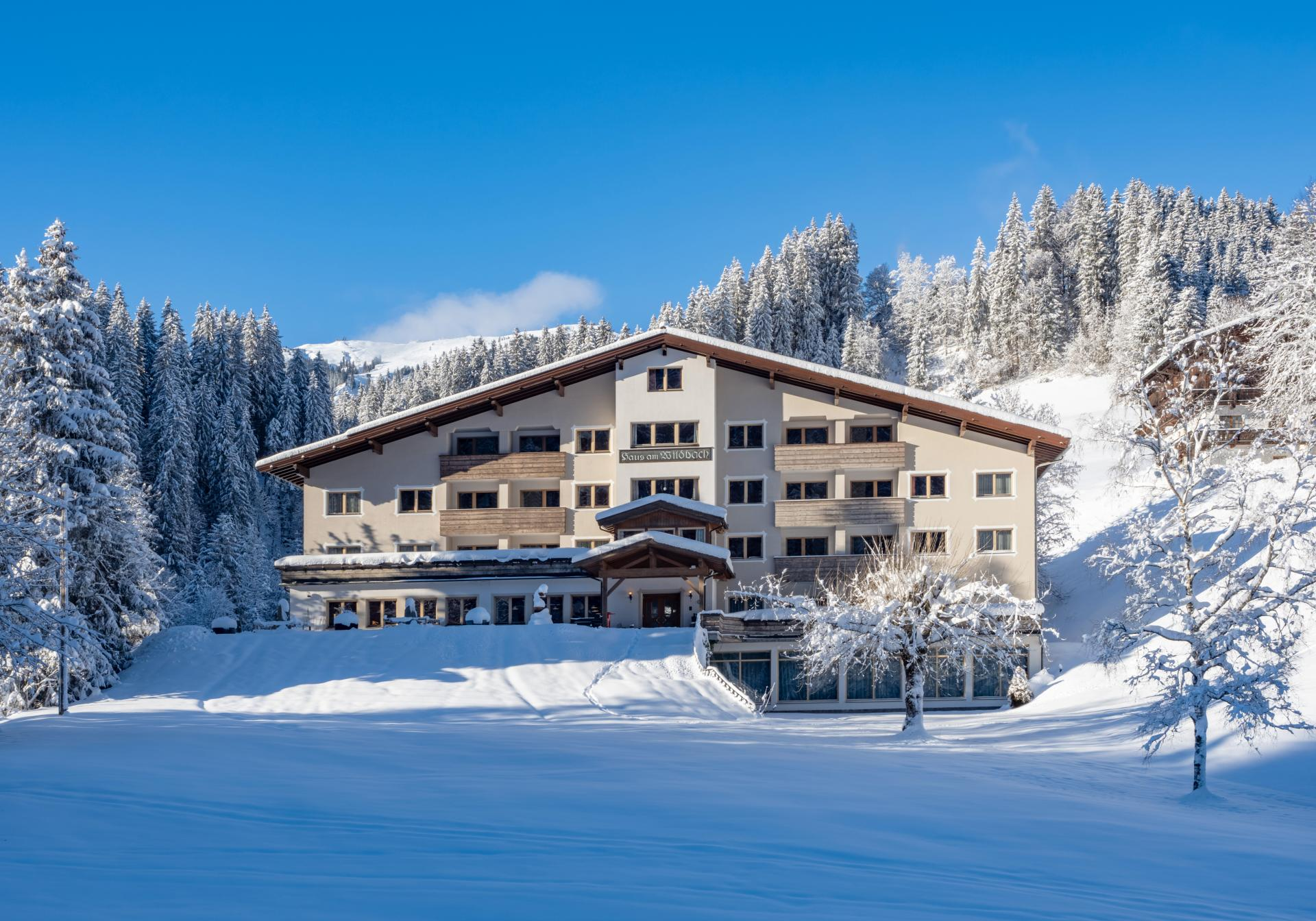 Haus am Wildbach #Bildergalerie#Winter